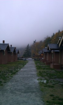 It's a foggy morning and so very pretty.