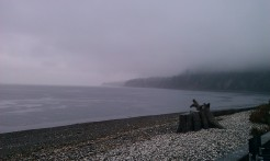 Foggy morning on the beach.