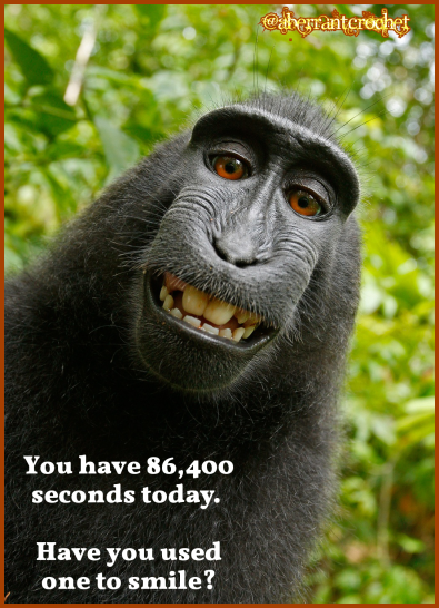 Aberrant Crochet's Gratitude Challenge - 6,400 seconds today - Have you used one to smile?