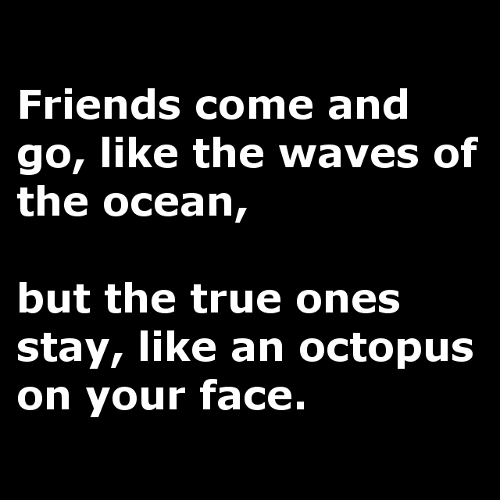 True friends are like octopi...